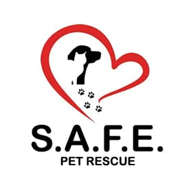 SAFE Pet Rescue | Beaver Toyota Wow Partner of the Month