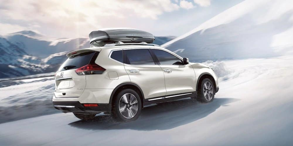 2019 rogue in snow