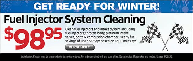 Fuel Injector System Cleaning