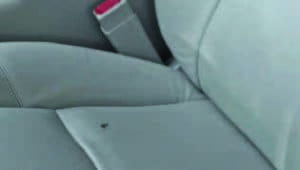 stain on silver car seat