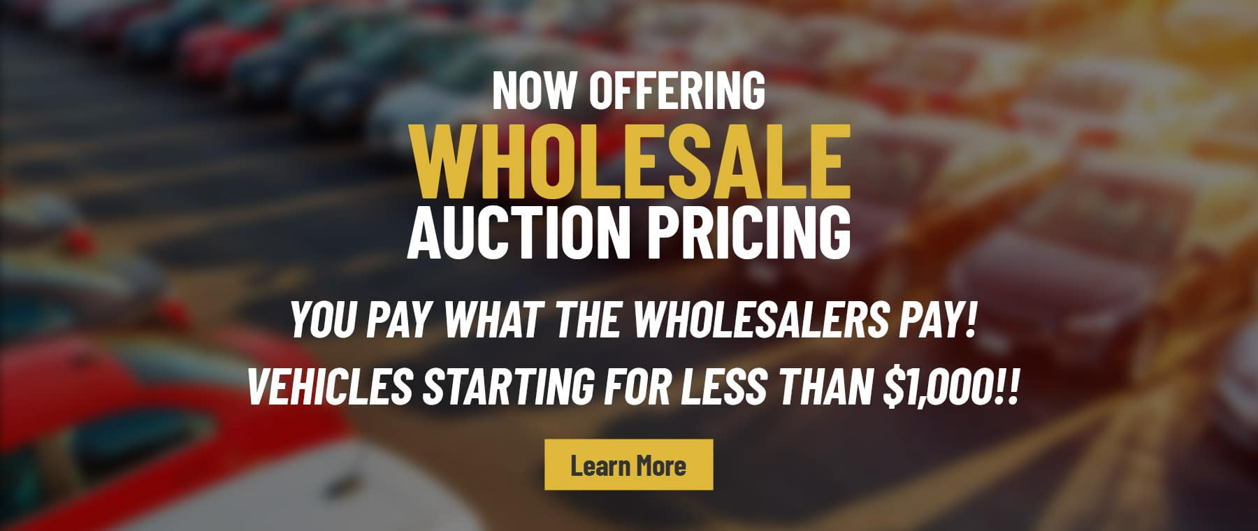Now Offering Wholesale Pricing