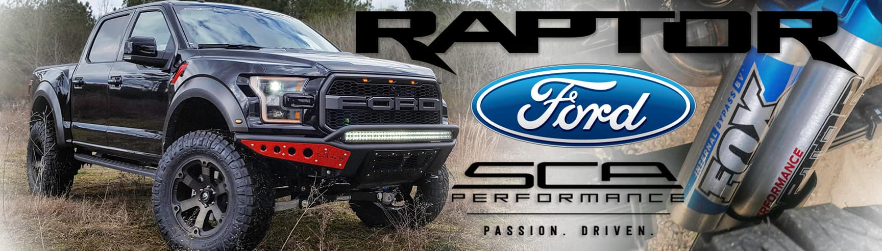 Custom Ford Raptor for Sale