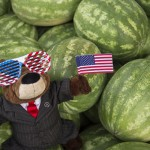 Employee Appreciation: Independence Day Watermelons