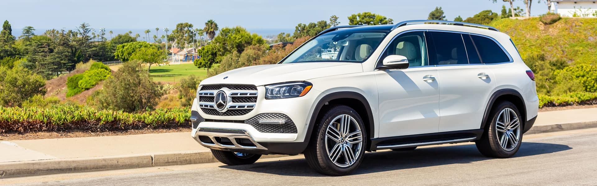 2020 Mercedes-Benz GLS Performance