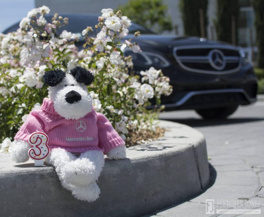 Plush Dog in Mercedes Sweater