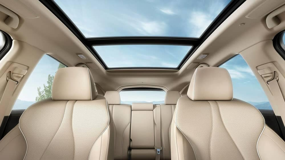 2019 Acura RDX interior seating and sun roof