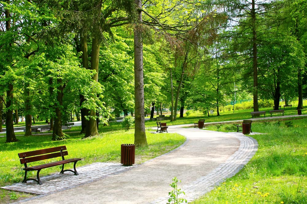 Park path with benches and garbage cans on sunny day