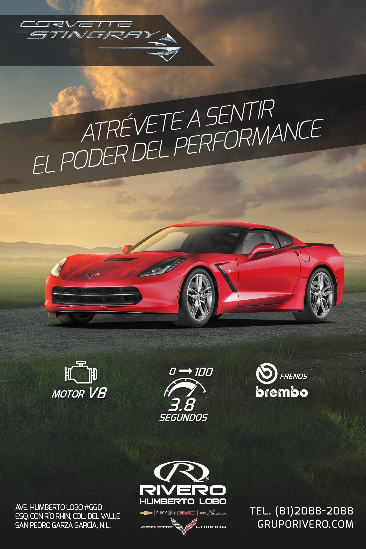 Rivero Humberto Lobo Corvette Stingray