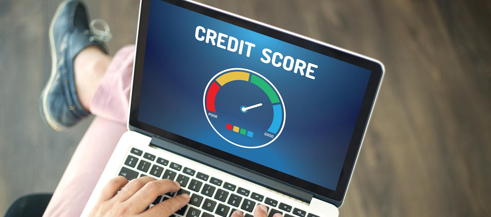 What Determines Credit Score