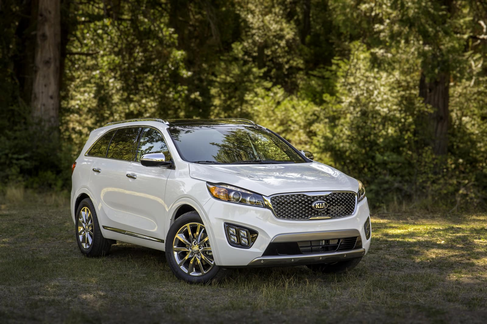 2018 Kia Sorento Charleston Kia Country Of Charleston
