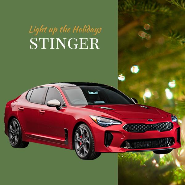 2018 Stinger $299/mo