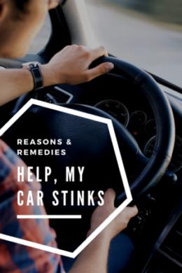 Stink Blog