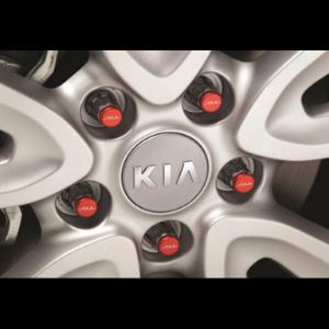 Wheel Locks $55-$60