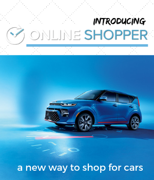 Online Shopper Blog Cover