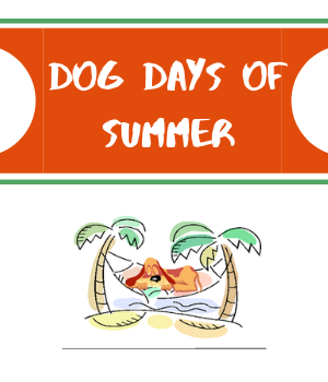 dog blog cover