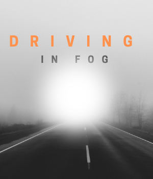fog blog cover