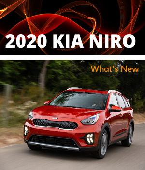 Niro Blog Cover