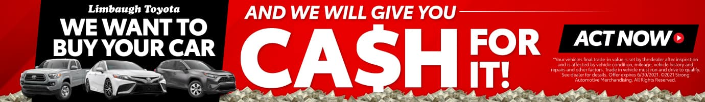 We Want to Buy Your Car and We Will Give You Cash for It! Act Now