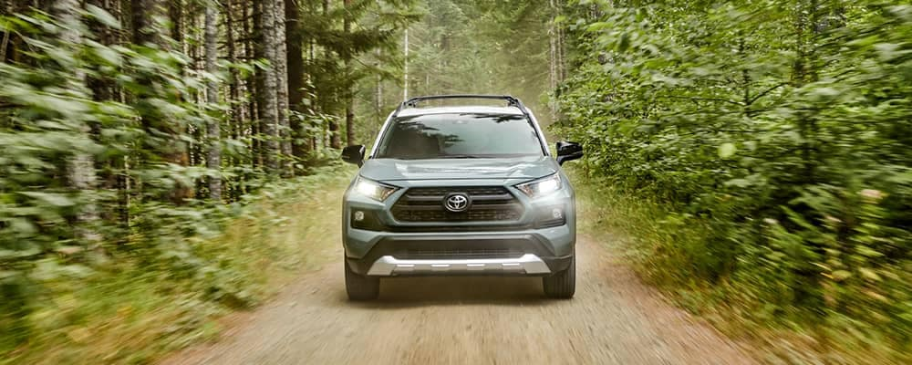 2019 Toyota RAV4 On Forest Trail