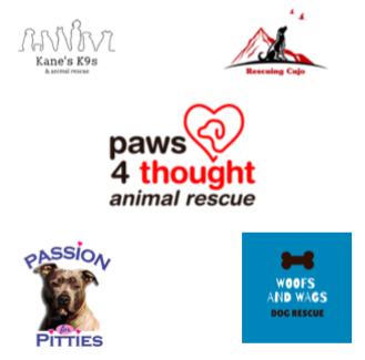 animal partners