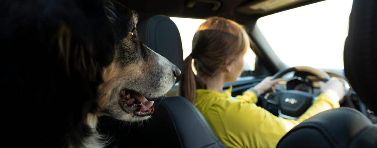 A woman is shown driving a 2021 Chevy Blazer with a dog in the backseat.