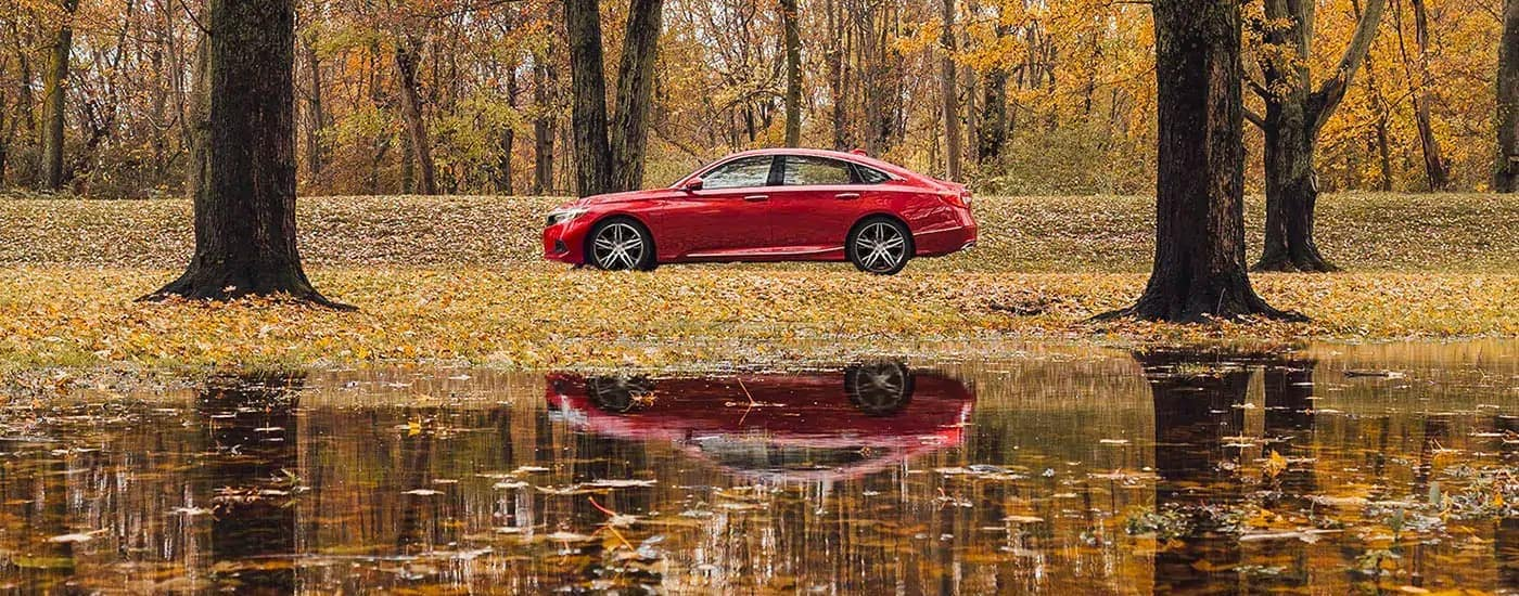 A red 2021 Honda Accord is shown from the side while parked behind a pond and in front of fall trees.