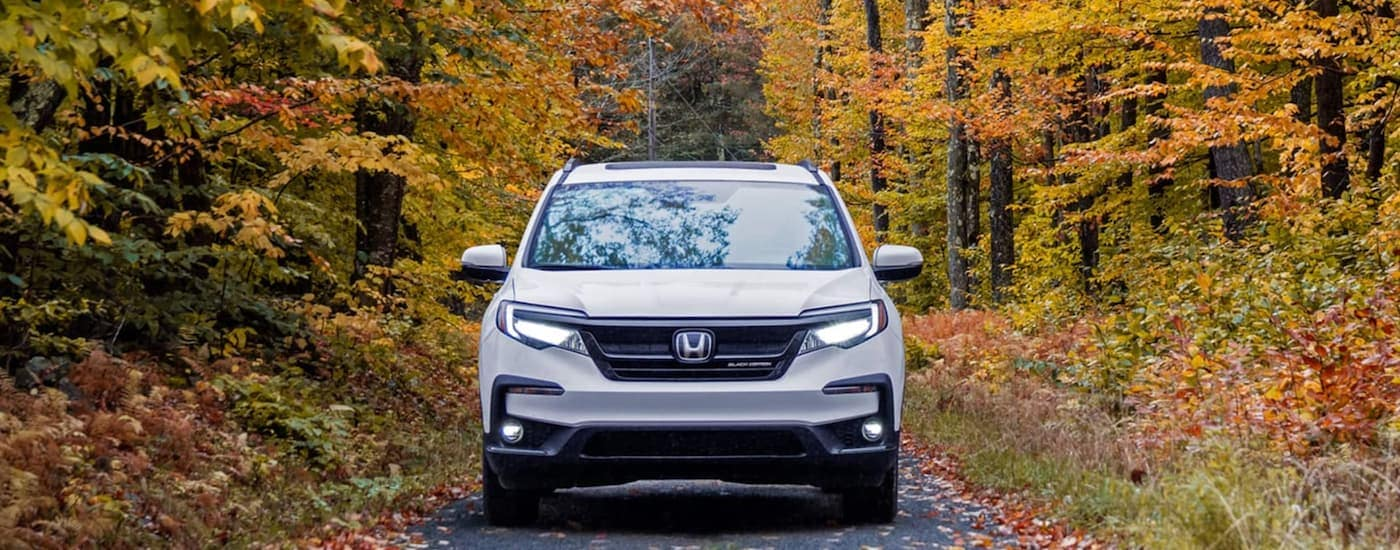 A white 2021 Honda Pilot Black edition is shown from the front parked on a tree lined road during fall.