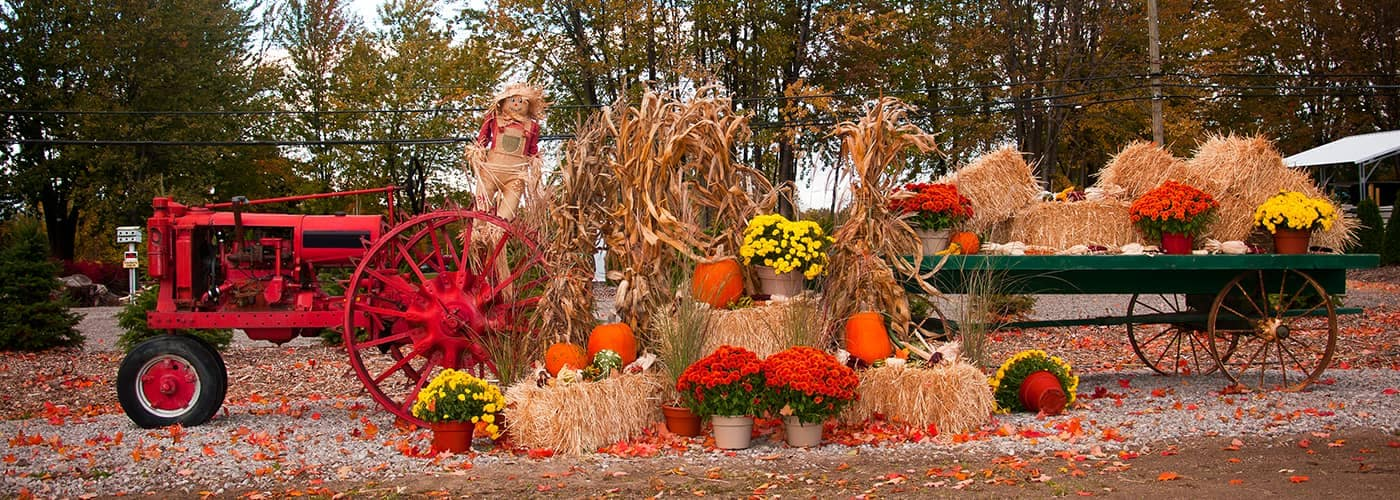 Tractor parked outside pumpkin patch decorated for fall