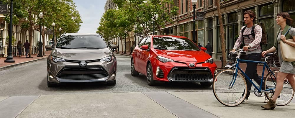 2019 Toyota Corolla Models Stopped at Crosswalk