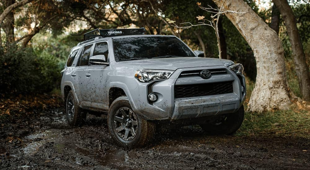 A light grey 2021 Toyota 4Runner is off-roading in the woods near Romeoville, IL.