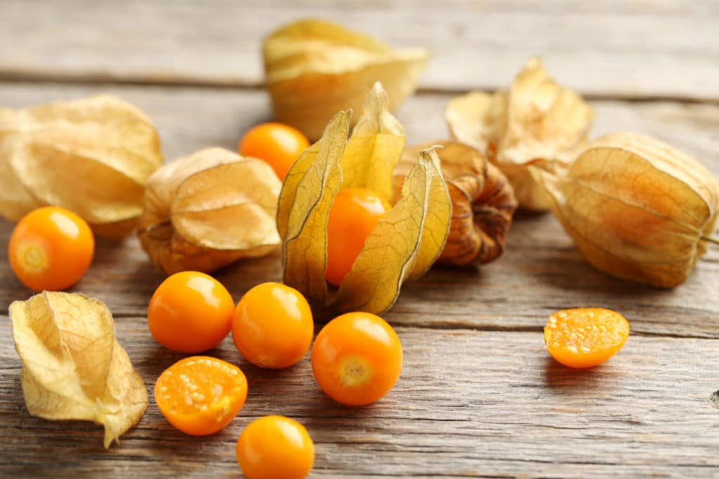 Ripe ground cherries on a grey wooden table