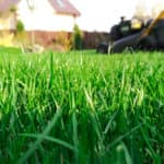 View of grass with lawn mower in the background