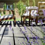 A back yard with a deck, patio furniture, and lavender