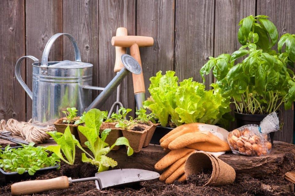 Warrenton Home And Garden Show