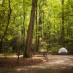Tent setup on a camping ground surrounded by lush woods.