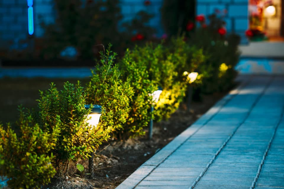 Lights in a row on a path in a garden