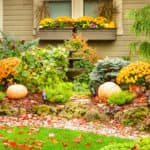 Fall garden with yellow and orange flowers and pumpkins