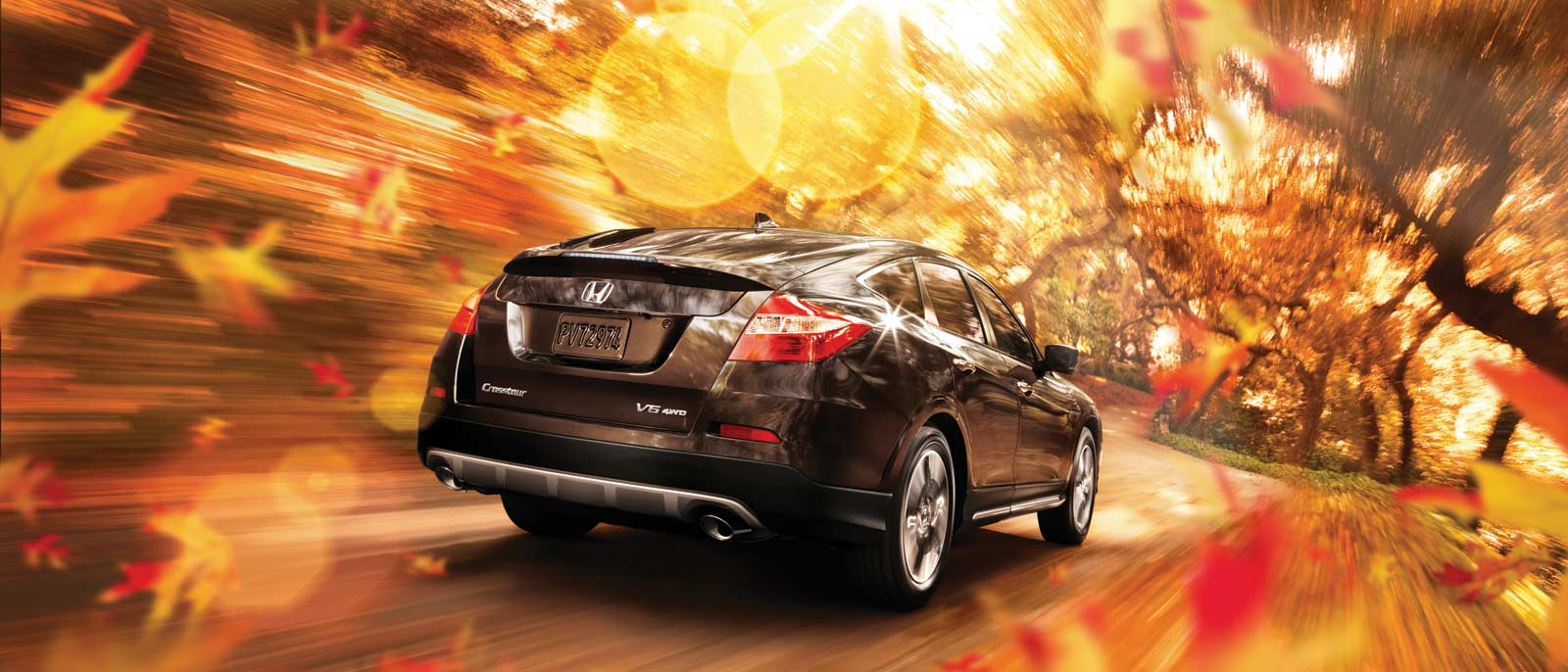 2015 Honda Crosstour in a pleasant forest setting