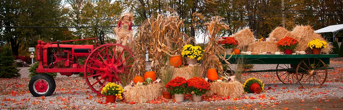 Tractor with Fall Decorations Depositphotos