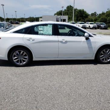 Toyota Avalon for sale in Clermont