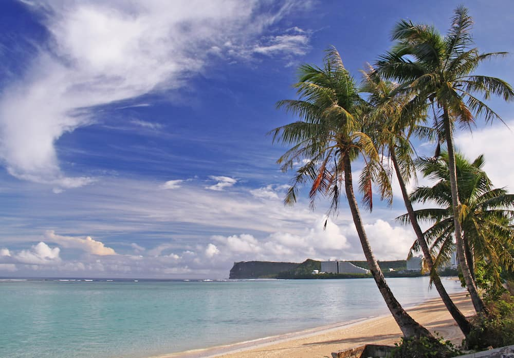 Palm trees on Guam with clouds in sky