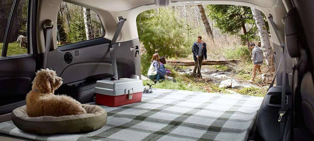 2018 Honda Pilot At Picnic