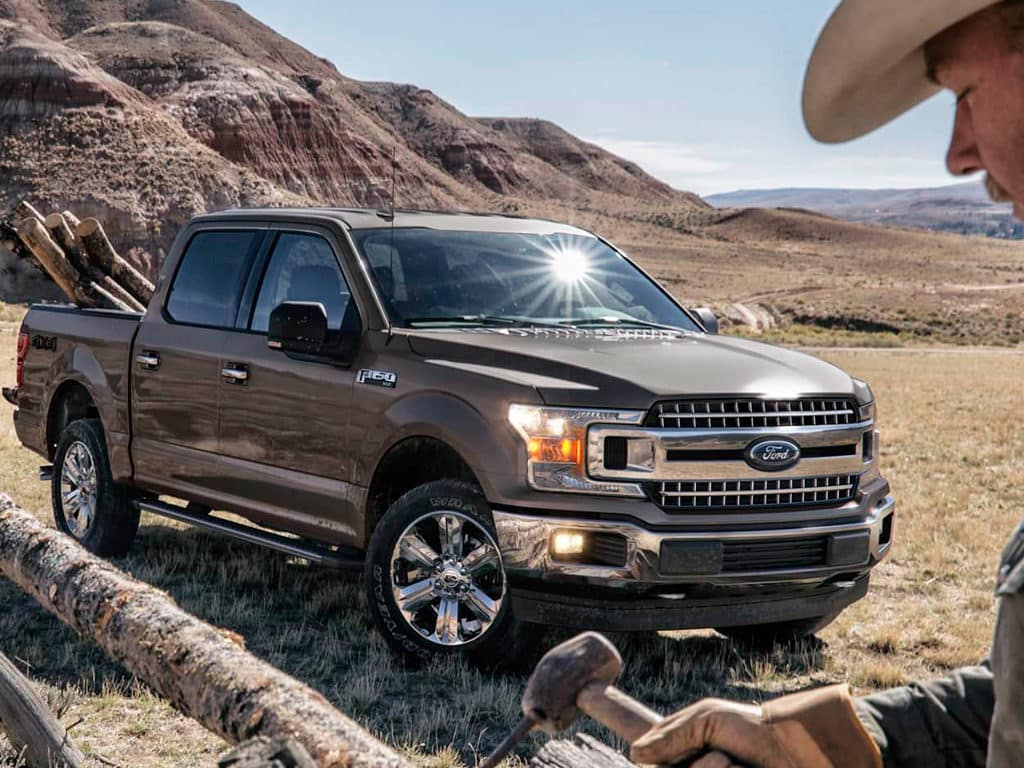 2019 Ford F-150 XL/XLT Models