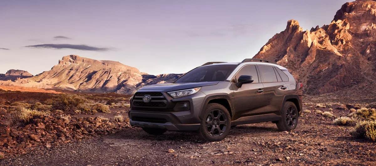 Test drive the 2020 Toyota RAV4 in Shreveport LA